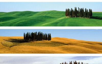 Valore Val d'Orcia. Esce il libro sul fenomeno del nostro paesaggio scritto Lorenzo Benocci e Cristiano Pellegrini